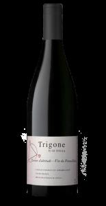 trigone-acantina-pacé